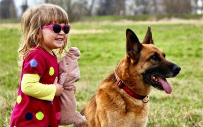 Djeca i psi: zajedničke aktivnosti za izgradnju odnosa