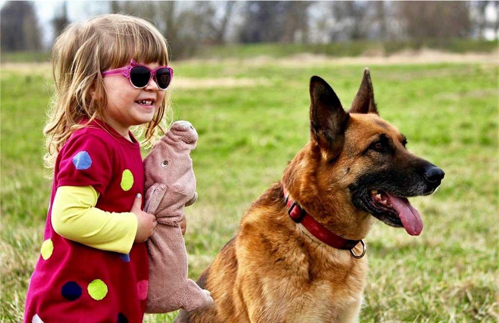 Curica i pas